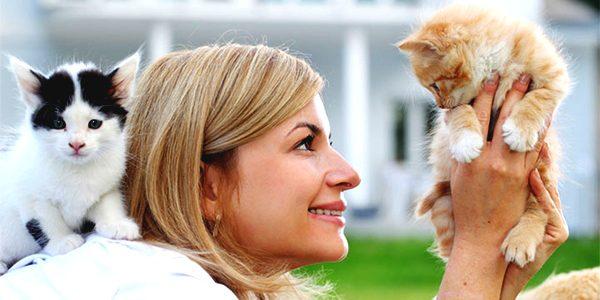 Best Pet Sitter in Woburn MA