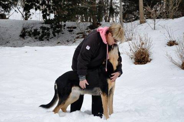 Best Dog Walking Services in Boston MA